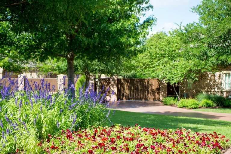 Waco Texas Landscaping Company | Lawn Care Specialists | Irrigation Installation & Repair | Tree Services