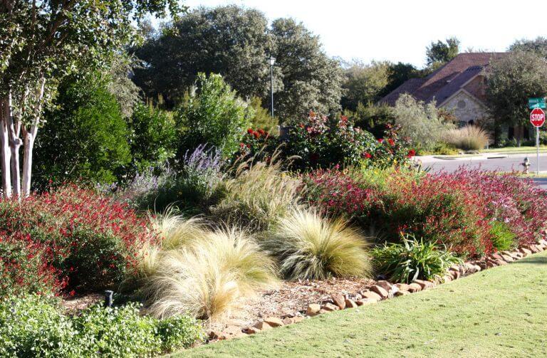 Lawn Care Waco Texas