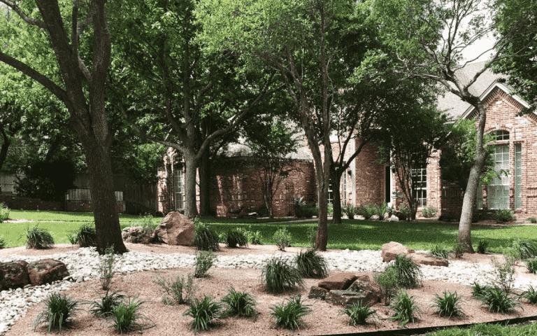 Tree Care & Fertilizing