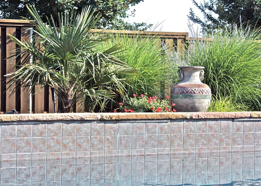 Waco TX Hardscape Design and Installation with palm trees, shrubs, and flowers