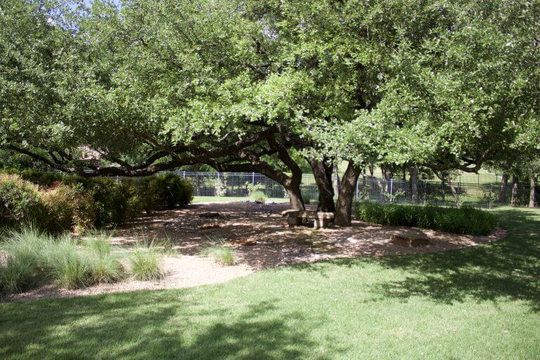 Landscaping Waco | Lawn Care | Irrigation | Tree Services