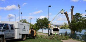 Fitzgeralds Landscaping Design, Lawn Maintenance, & Tree Service