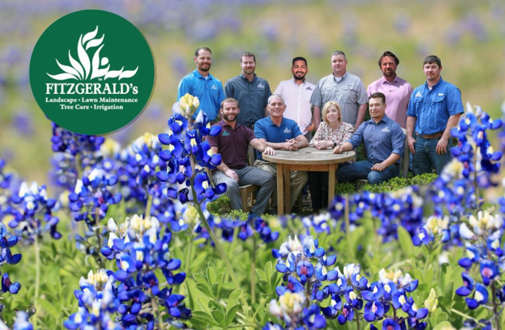 Waco Landscaping, Lawn Maintenance, Irrigation, & Tree Care Specialists | Fitzgerald's Team